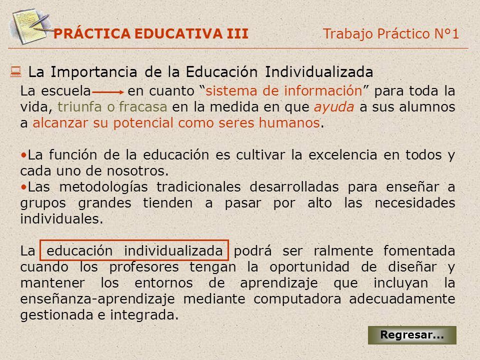 La Importancia de la Educación Individualizada