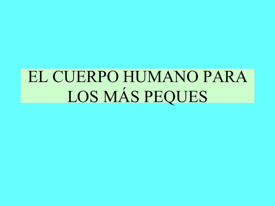 EL CUERPO HUMANO PARA LOS MÁS PEQUES