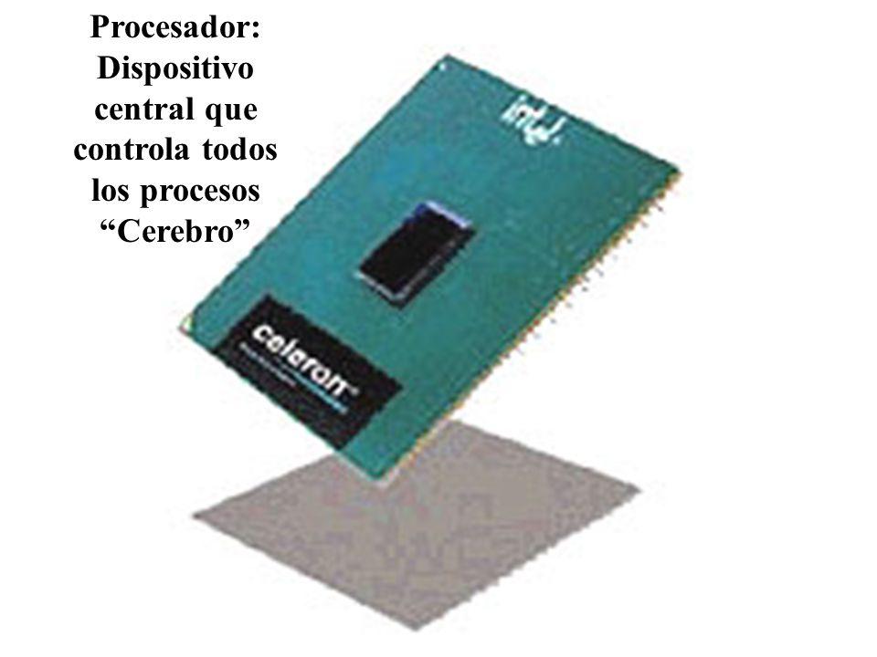Procesador: Dispositivo central que controla todos los procesos Cerebro