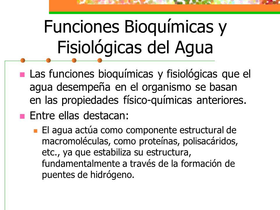 Funciones Bioquímicas y Fisiológicas del Agua
