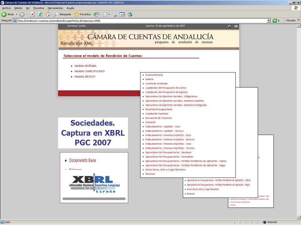 Sociedades. Captura en XBRL PGC 2007