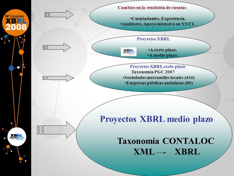 Taxonomía CONTALOC XML XBRL
