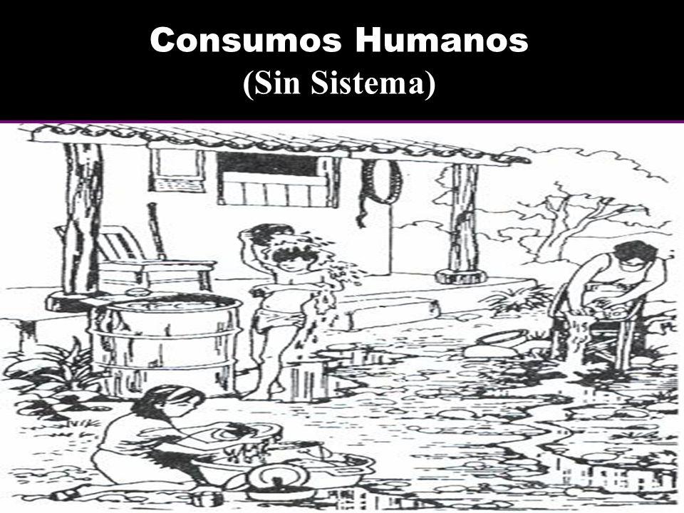 Consumos Humanos (Sin Sistema)