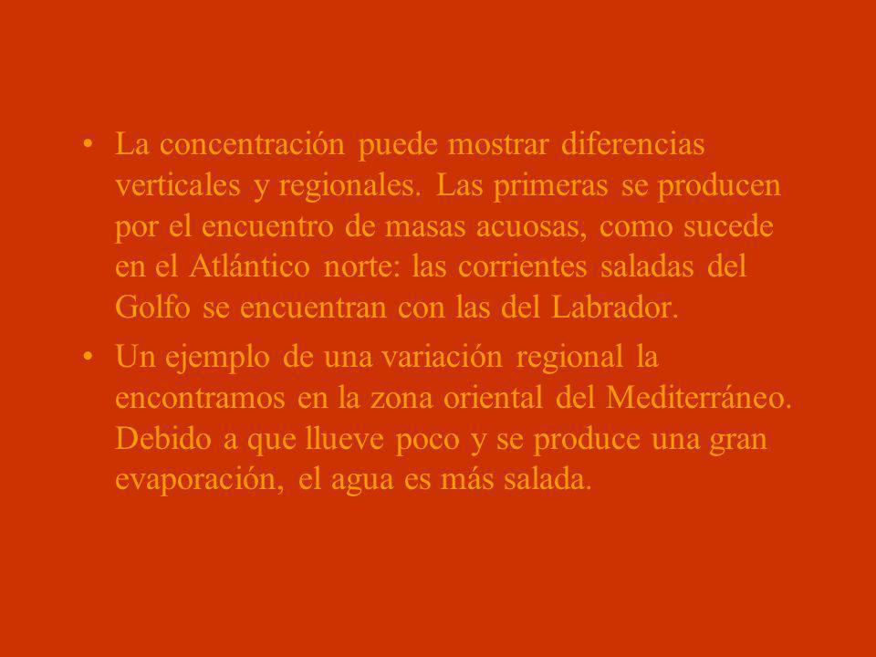 La concentración puede mostrar diferencias verticales y regionales