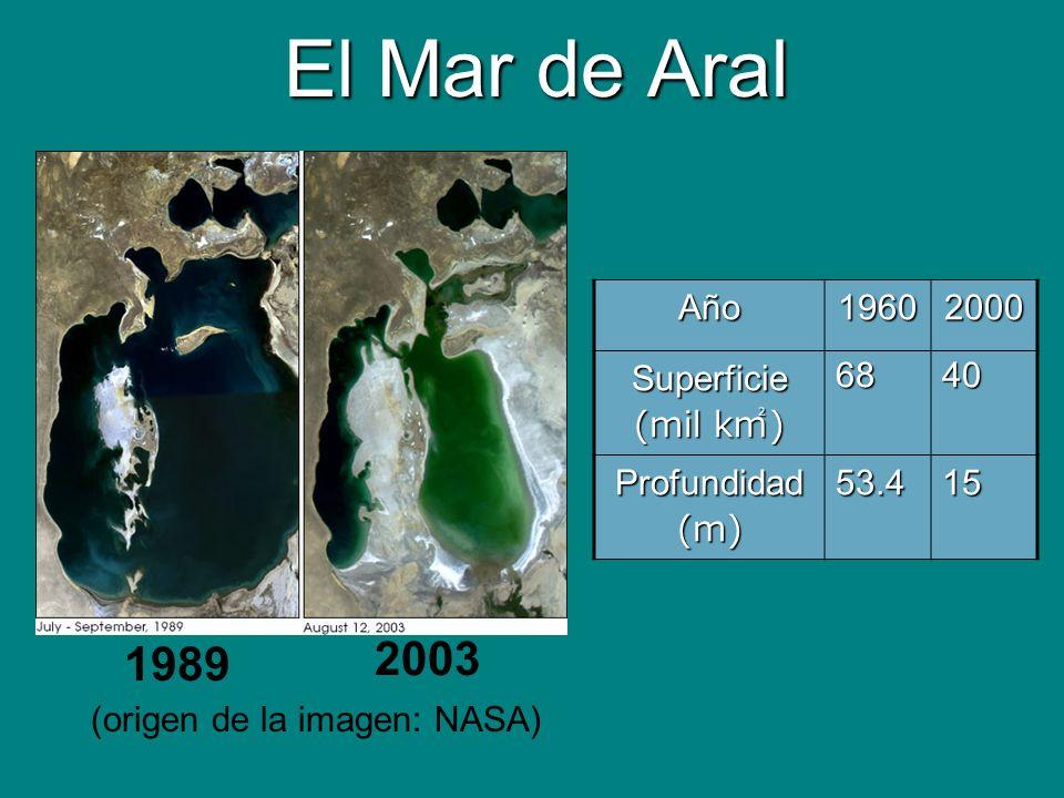 El Mar de Aral 2003 1989 Año 1960 2000 Superficie (mil k㎡) 68 40