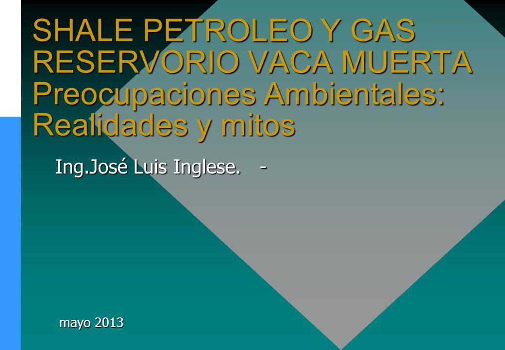 Ing.José Luis Inglese. - mayo 2013