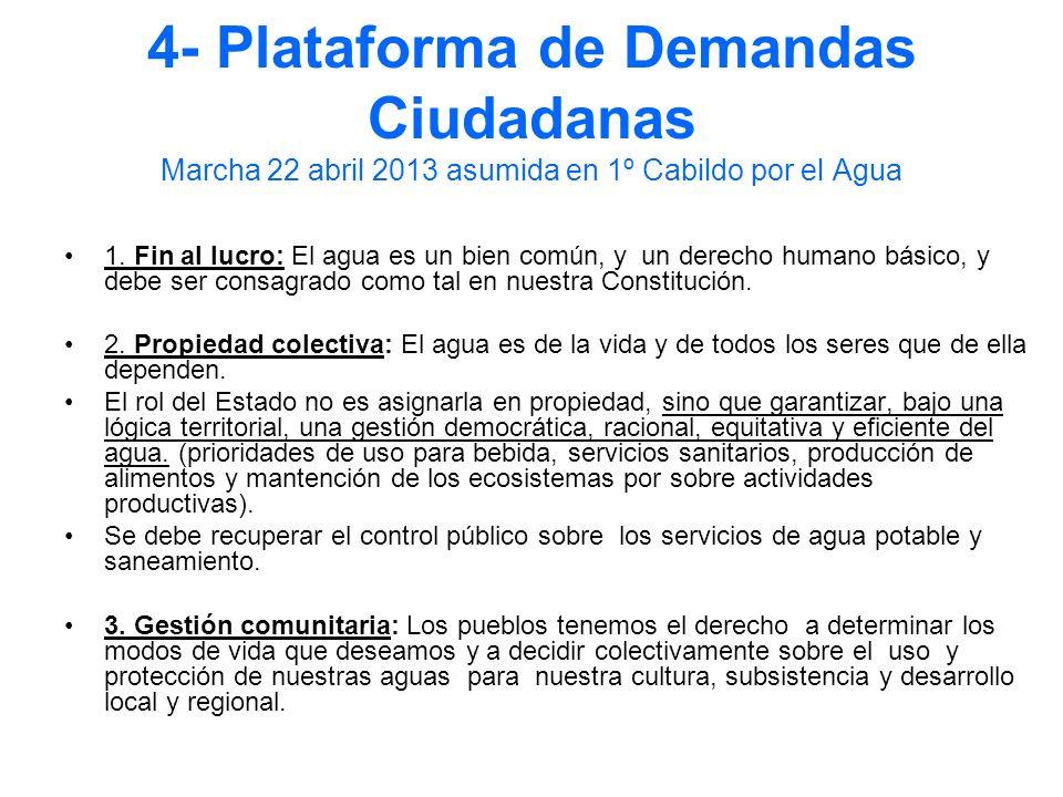4- Plataforma de Demandas Ciudadanas Marcha 22 abril 2013 asumida en 1º Cabildo por el Agua
