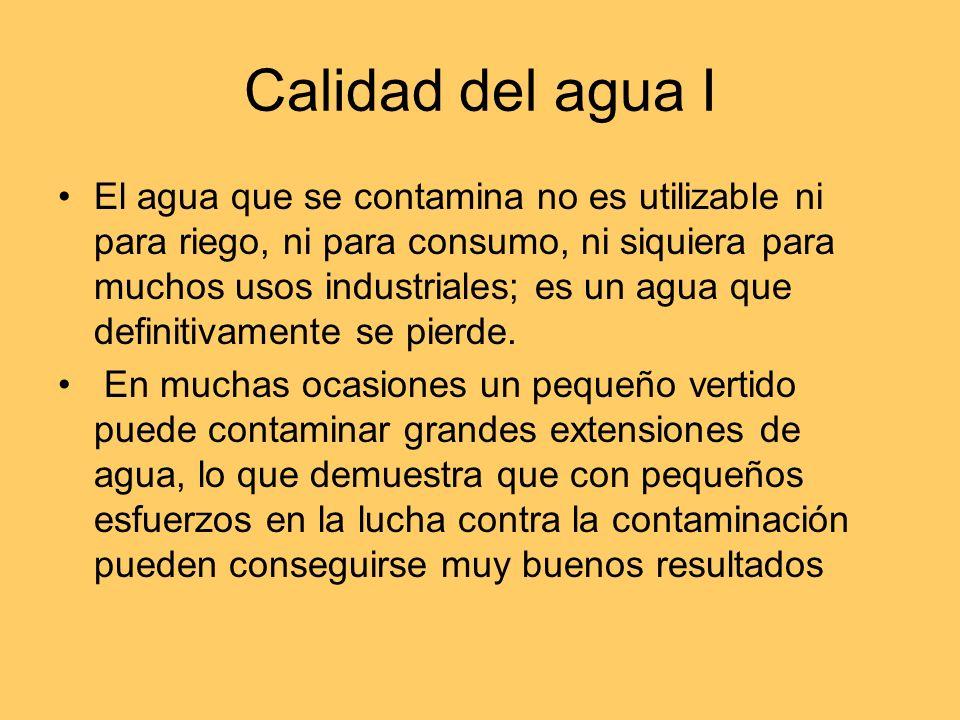 Calidad del agua I