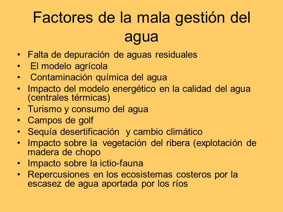 Factores de la mala gestión del agua