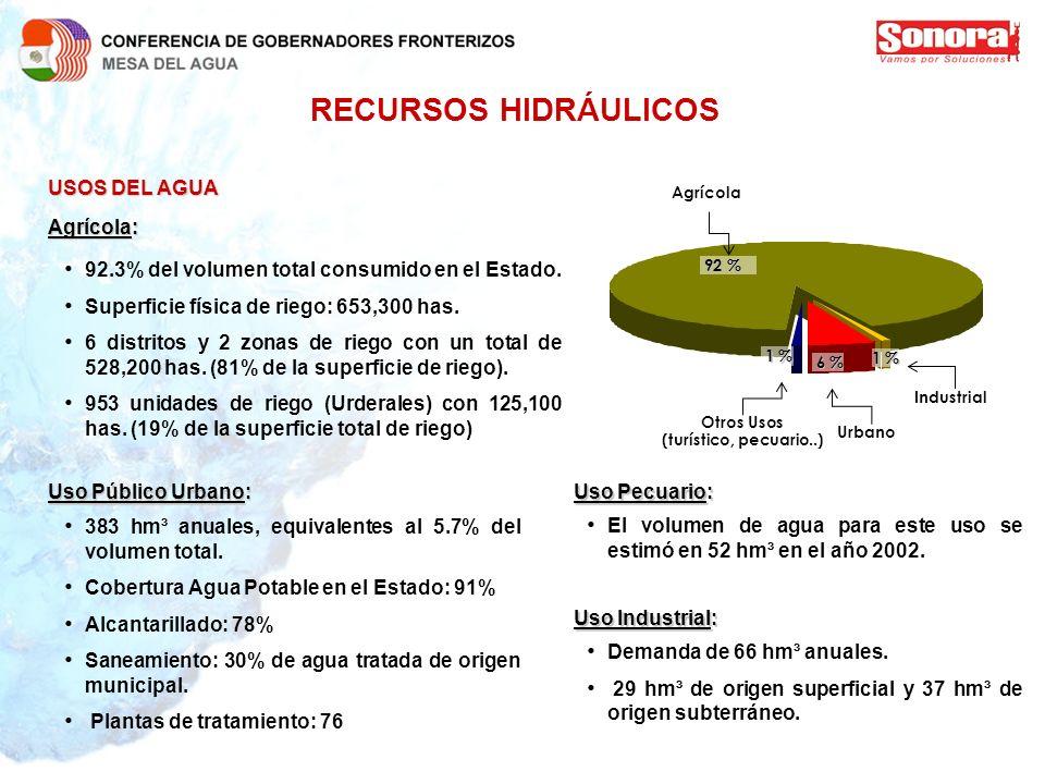 RECURSOS HIDRÁULICOS USOS DEL AGUA Agrícola:
