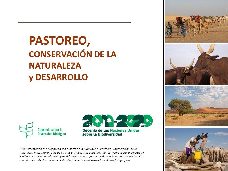 PASTOREO, CONSERVACIÓN DE LA NATURALEZA y DESARROLLO