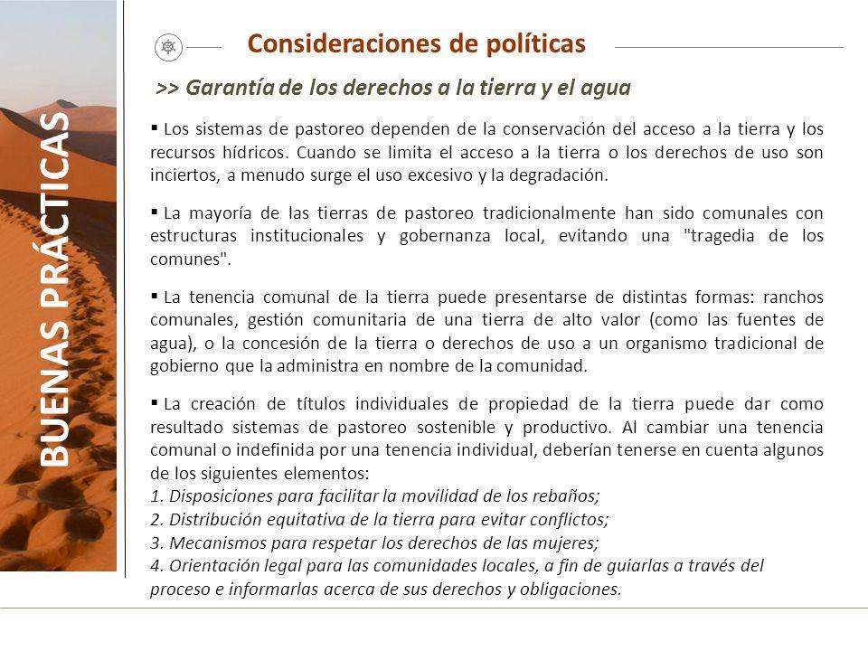 Consideraciones de políticas