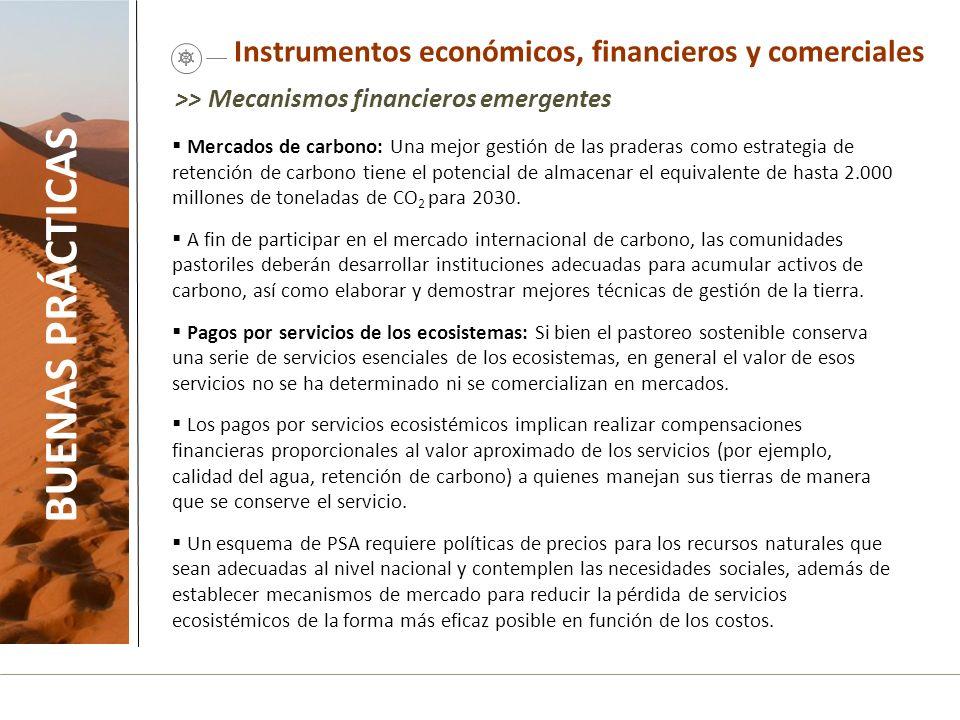 Instrumentos económicos, financieros y comerciales