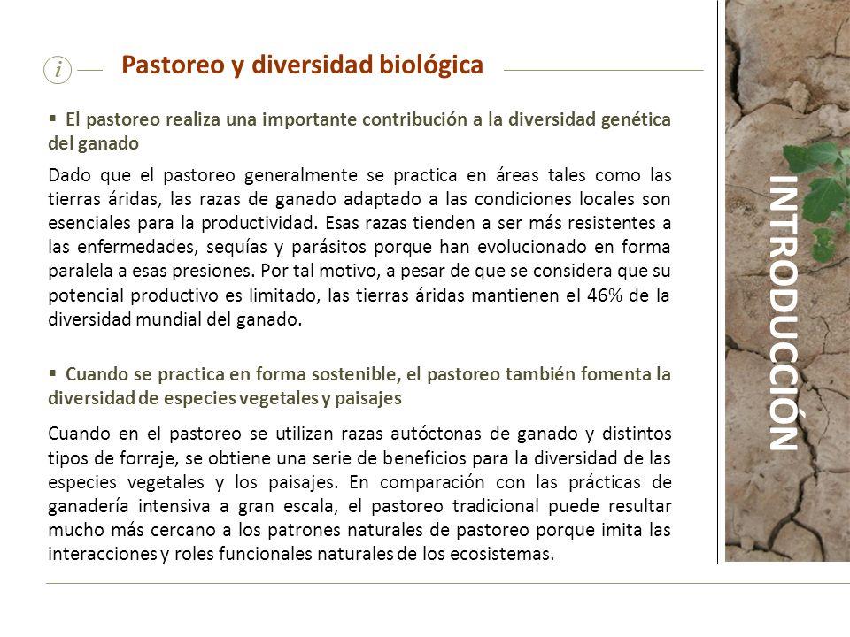 Pastoreo y diversidad biológica
