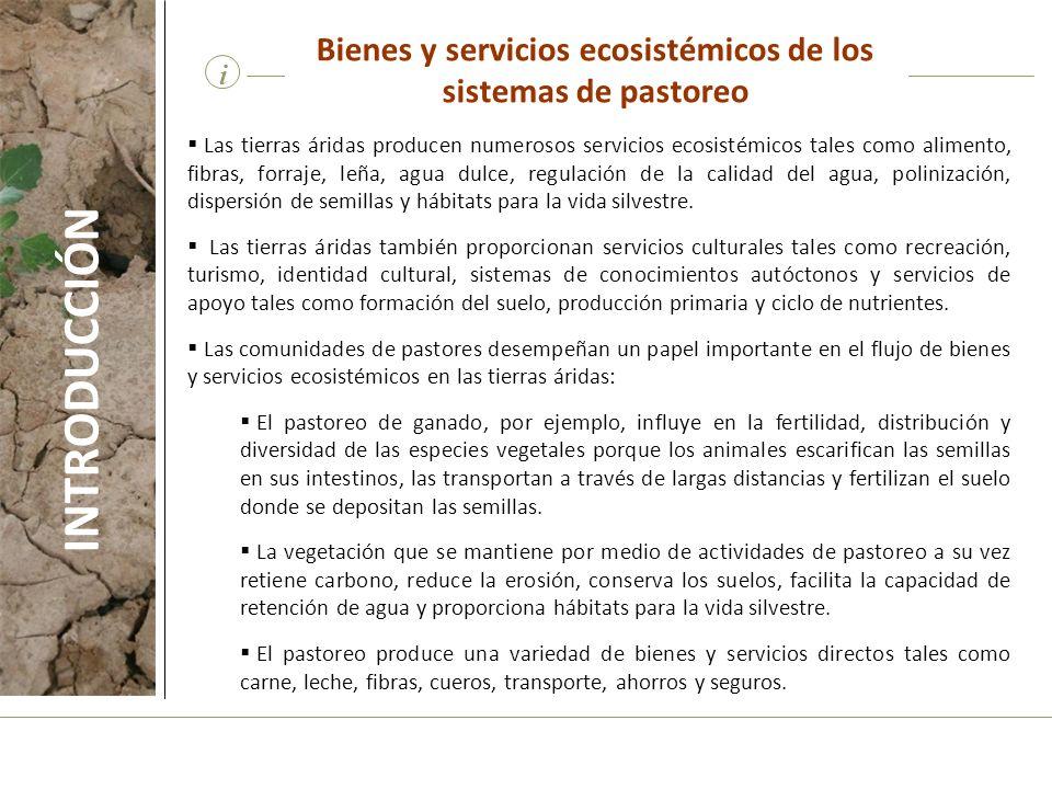 Bienes y servicios ecosistémicos de los sistemas de pastoreo