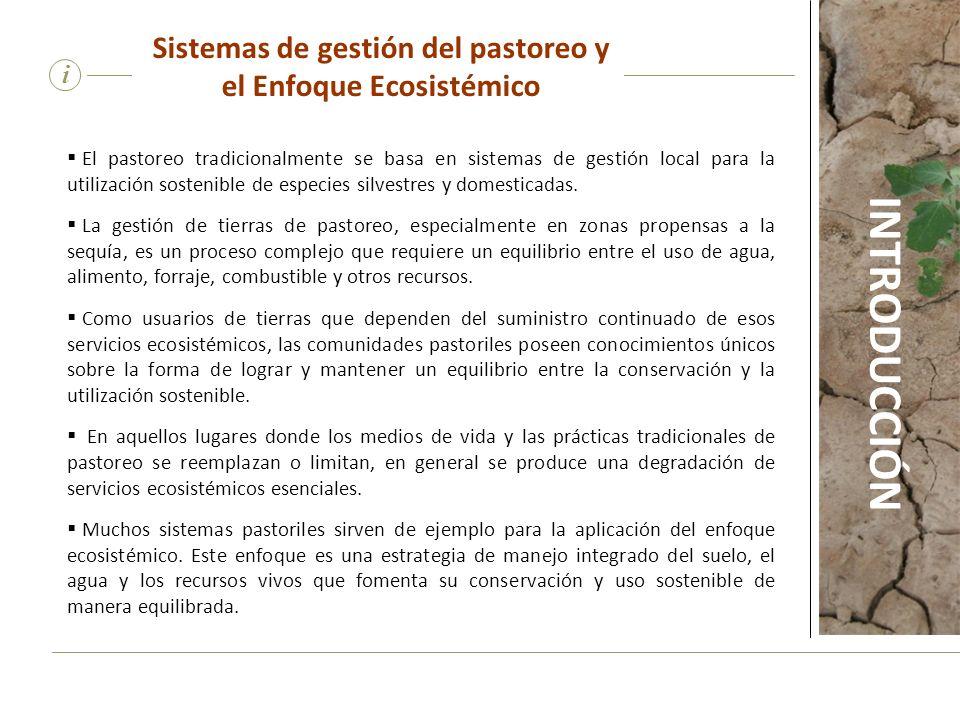 Sistemas de gestión del pastoreo y el Enfoque Ecosistémico