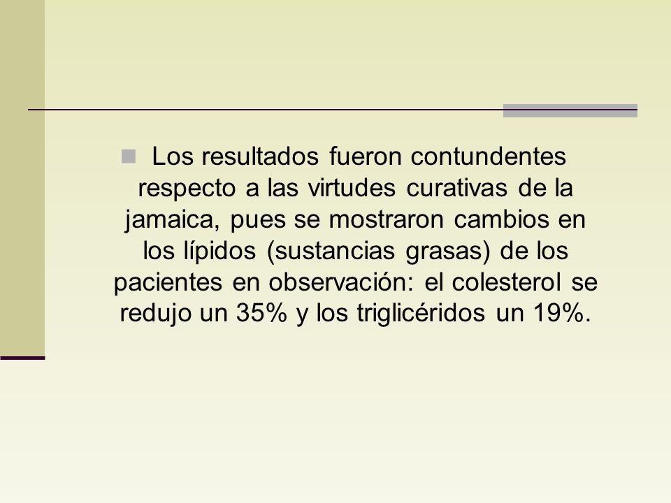 Los resultados fueron contundentes respecto a las virtudes curativas de la jamaica, pues se mostraron cambios en los lípidos (sustancias grasas) de los pacientes en observación: el colesterol se redujo un 35% y los triglicéridos un 19%.