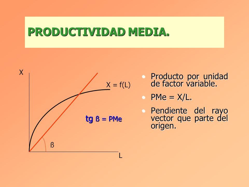 PRODUCTIVIDAD MEDIA. Producto por unidad de factor variable.