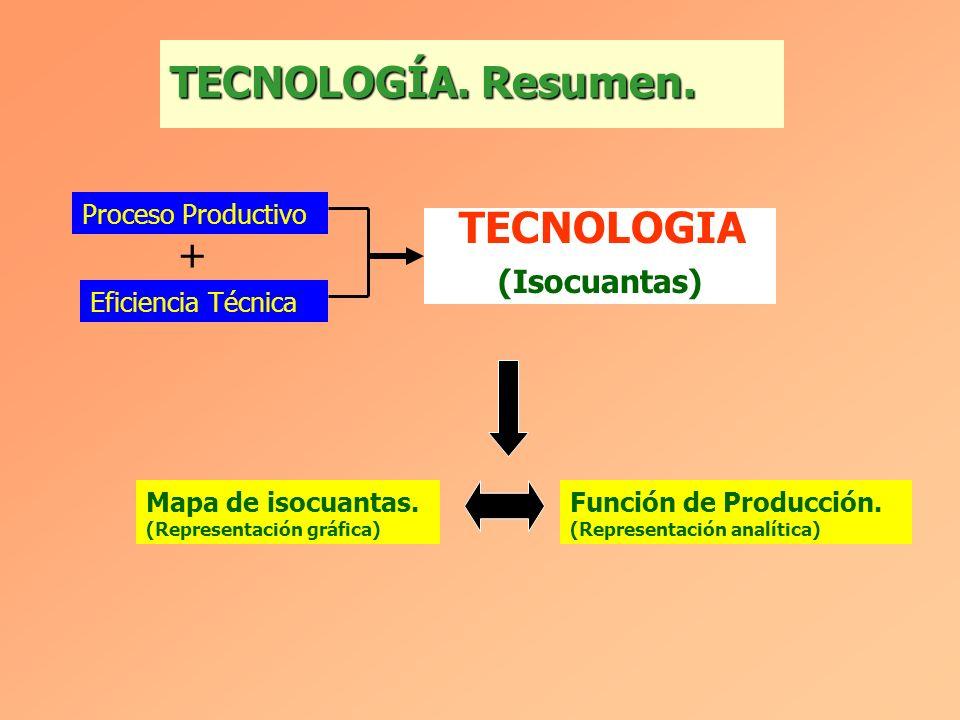 TECNOLOGÍA. Resumen. TECNOLOGIA + (Isocuantas) Proceso Productivo