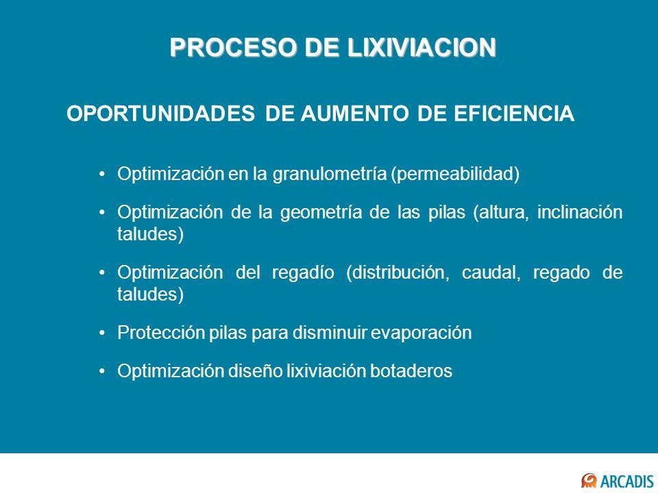 PROCESO DE LIXIVIACION