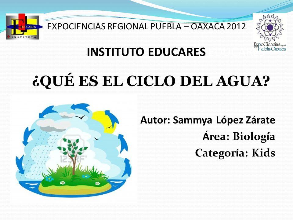EXPOCIENCIAS REGIONAL PUEBLA – OAXACA 2012 INSTITUTO EDUCARES EDUCARES