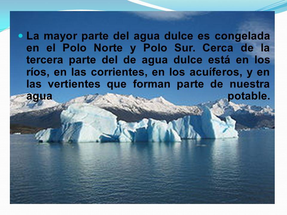 La mayor parte del agua dulce es congelada en el Polo Norte y Polo Sur