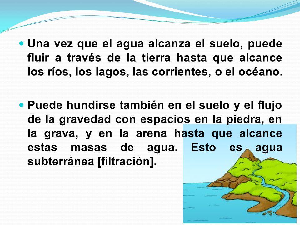 Una vez que el agua alcanza el suelo, puede fluir a través de la tierra hasta que alcance los ríos, los lagos, las corrientes, o el océano.
