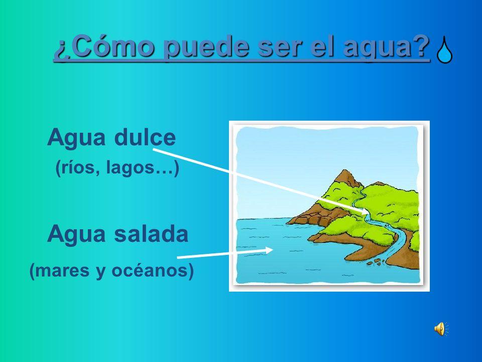 ¿Cómo puede ser el agua Agua dulce Agua salada (ríos, lagos…)