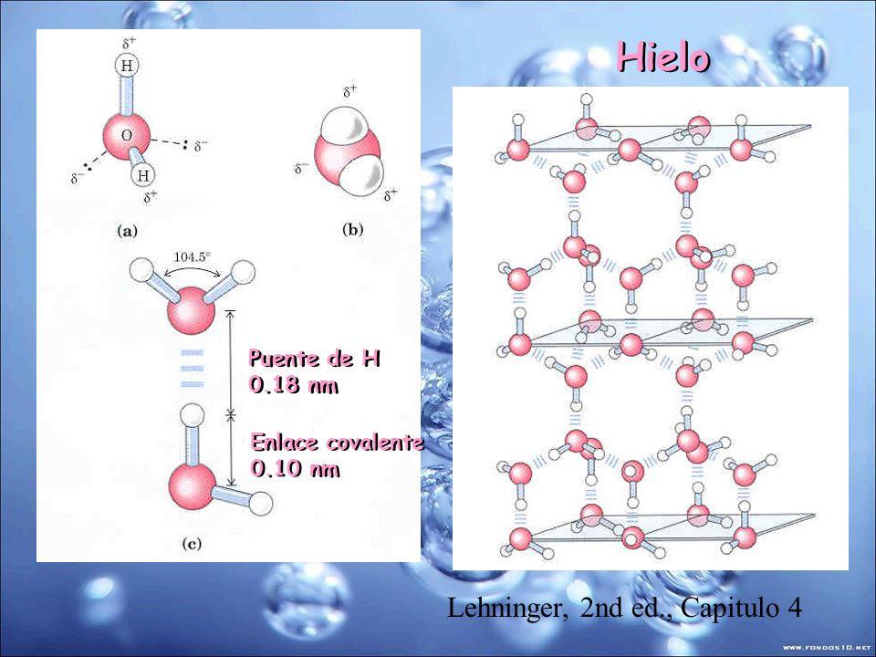 Hielo Lehninger, 2nd ed., Capitulo 4 Puente de H 0.18 nm