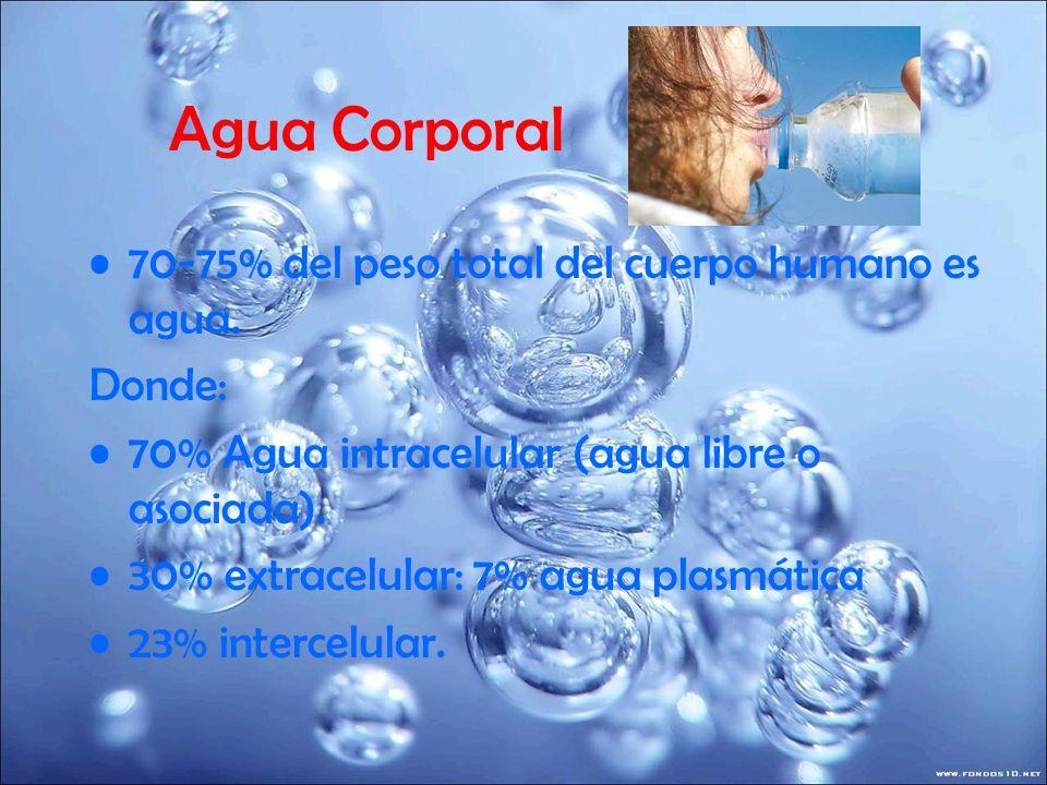Agua Corporal 70-75% del peso total del cuerpo humano es agua. Donde: