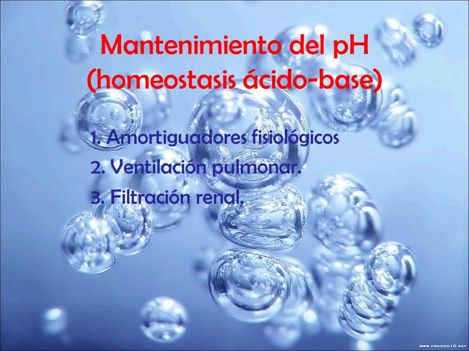 Mantenimiento del pH (homeostasis ácido-base)
