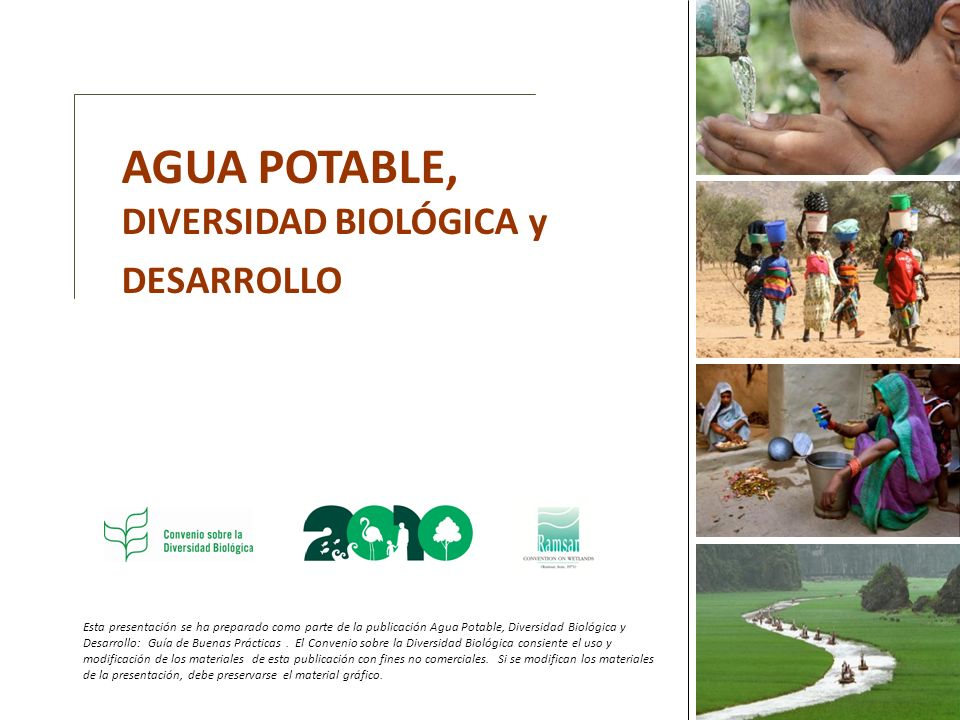 AGUA POTABLE, DIVERSIDAD BIOLÓGICA y DESARROLLO