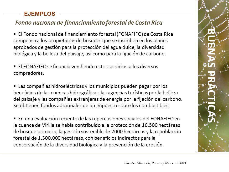 EJEMPLOS Fondo nacional de financiamiento forestal de Costa Rica.