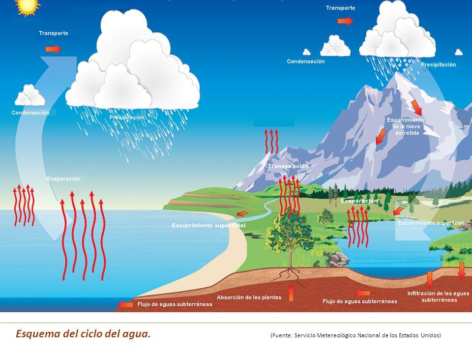 Esquema del ciclo del agua
