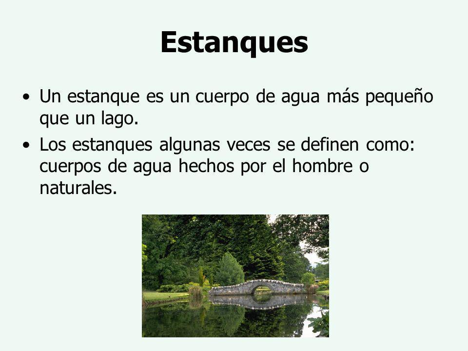 Estanques Un estanque es un cuerpo de agua más pequeño que un lago.
