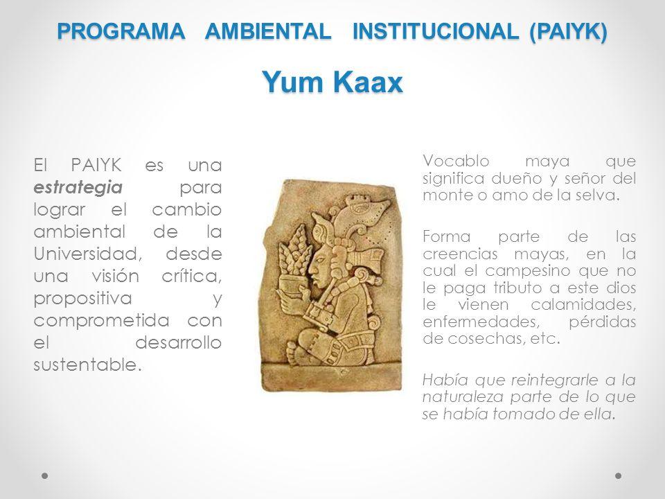 PROGRAMA AMBIENTAL INSTITUCIONAL (PAIYK) Yum Kaax