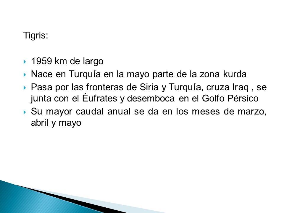 Tigris: 1959 km de largo. Nace en Turquía en la mayo parte de la zona kurda.