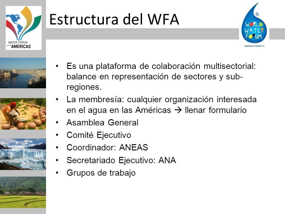 Estructura del WFA Es una plataforma de colaboración multisectorial: balance en representación de sectores y sub-regiones.
