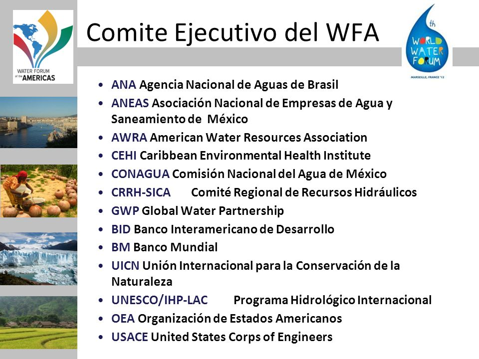 Comite Ejecutivo del WFA