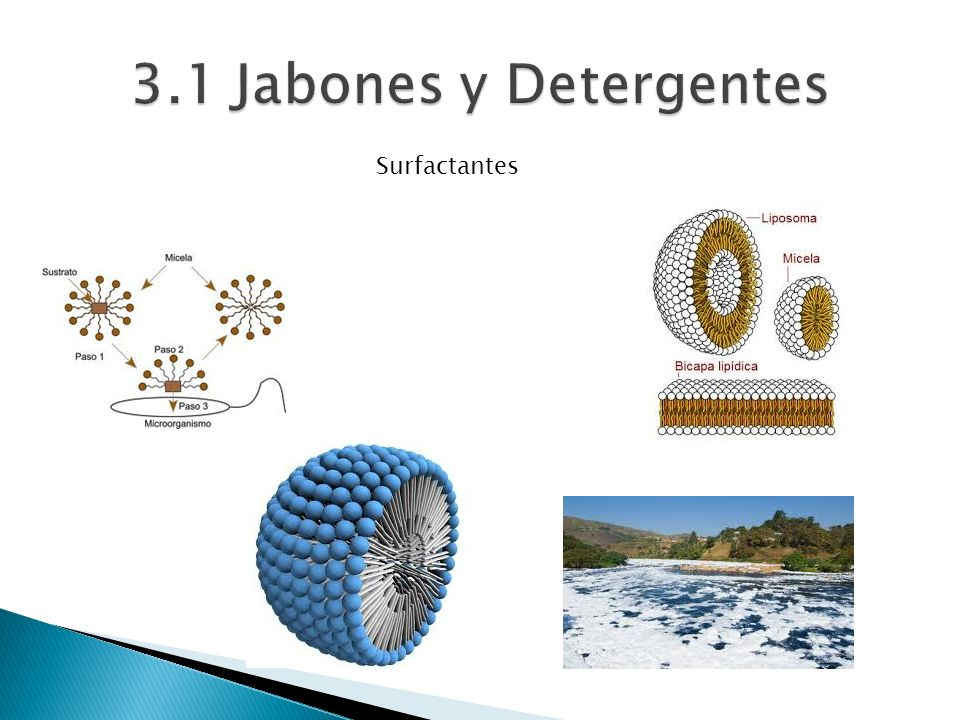 3.1 Jabones y Detergentes Surfactantes