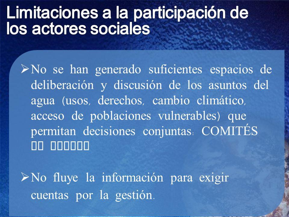 Limitaciones a la participación de los actores sociales