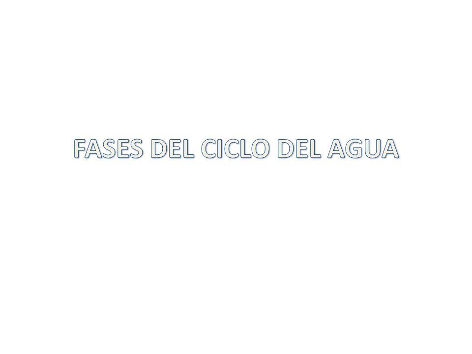 FASES DEL CICLO DEL AGUA
