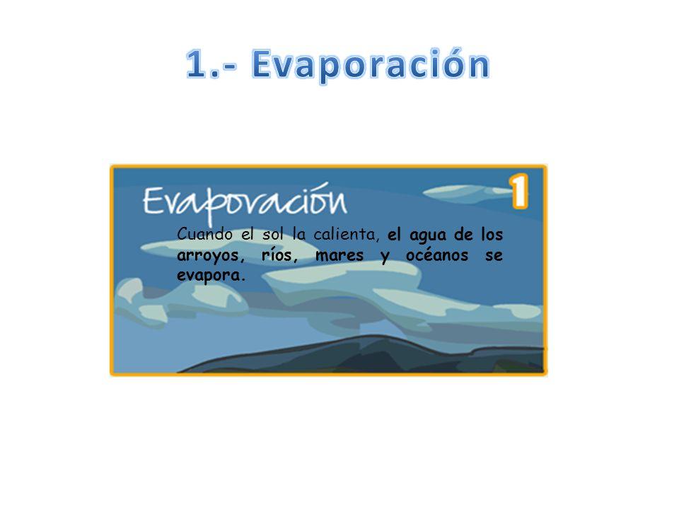 1.- Evaporación Cuando el sol la calienta, el agua de los arroyos, ríos, mares y océanos se evapora.
