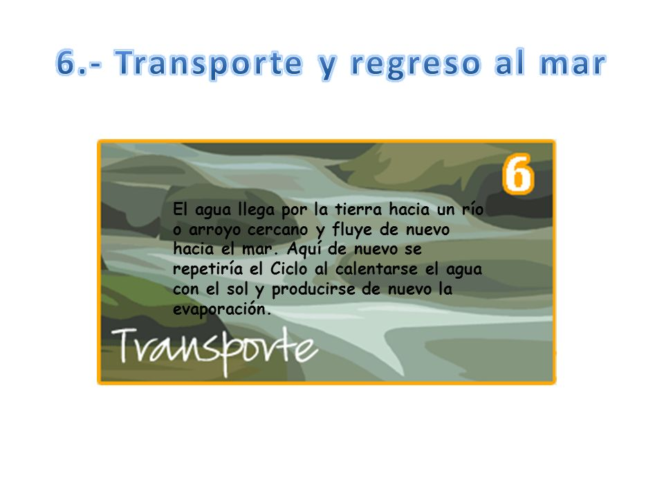 6.- Transporte y regreso al mar
