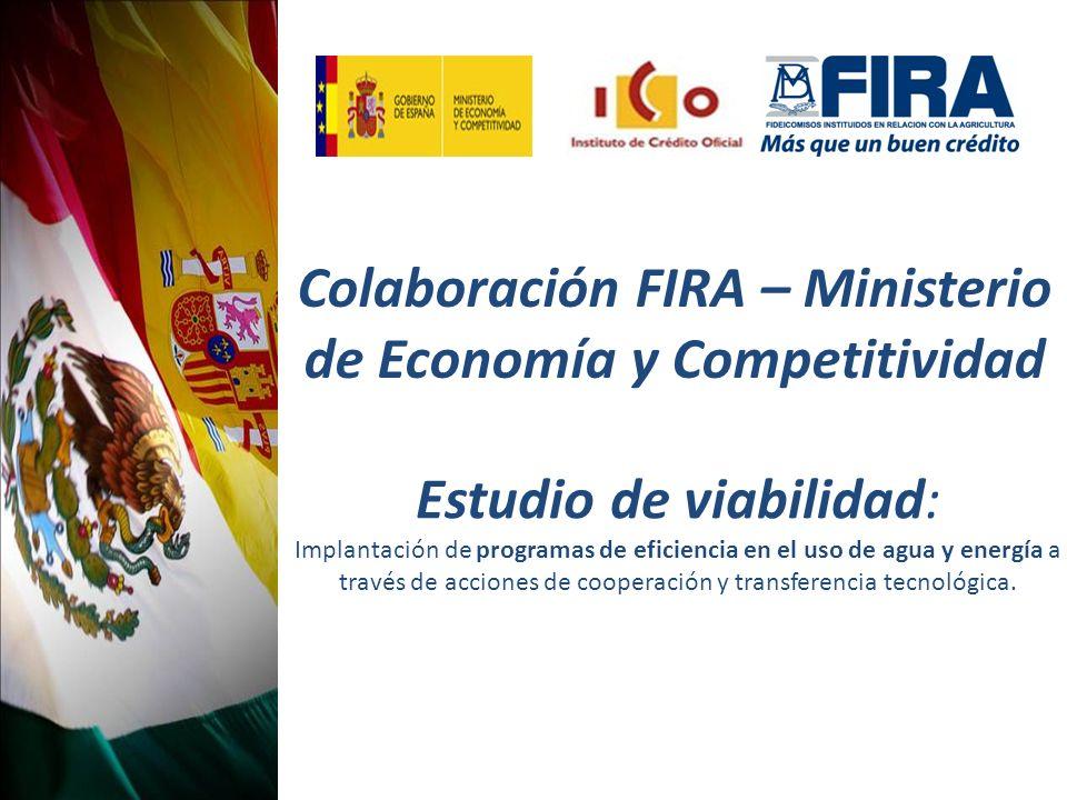 Colaboración FIRA – Ministerio de Economía y Competitividad