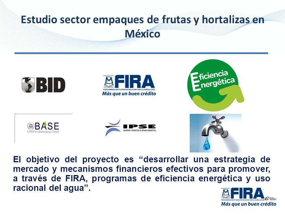 Estudio sector empaques de frutas y hortalizas en México