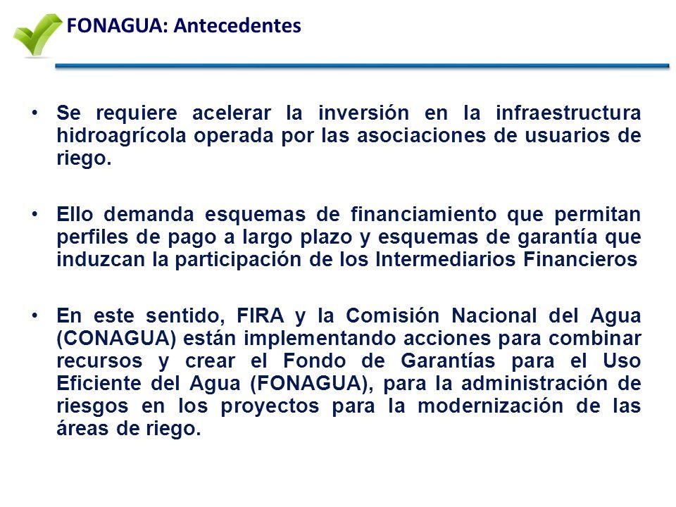 FONAGUA: Antecedentes