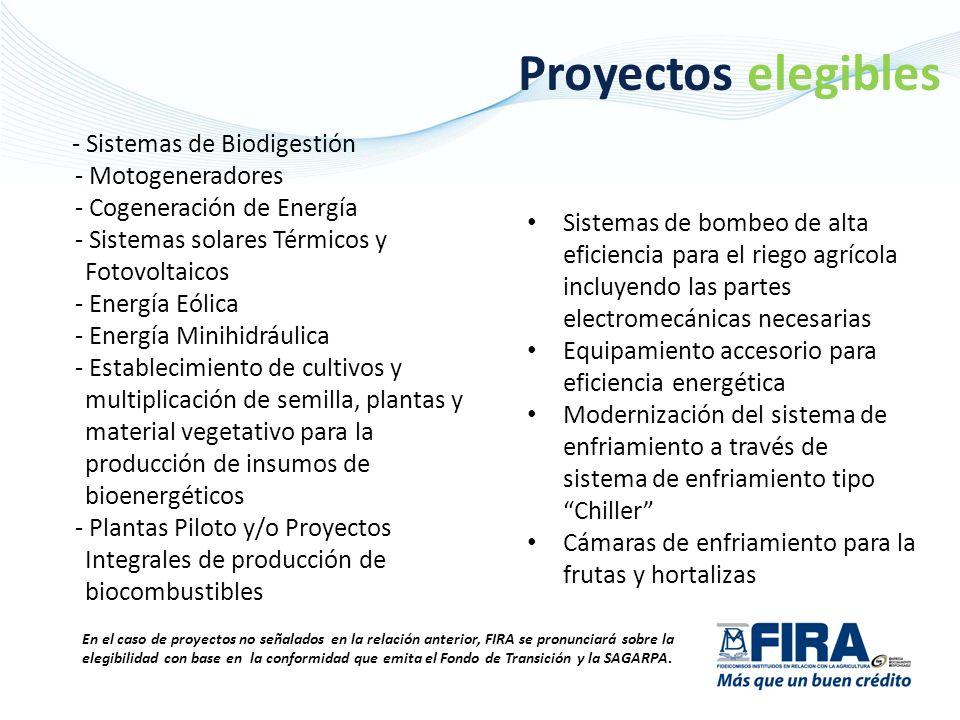 Proyectos elegibles - Sistemas de Biodigestión - Motogeneradores