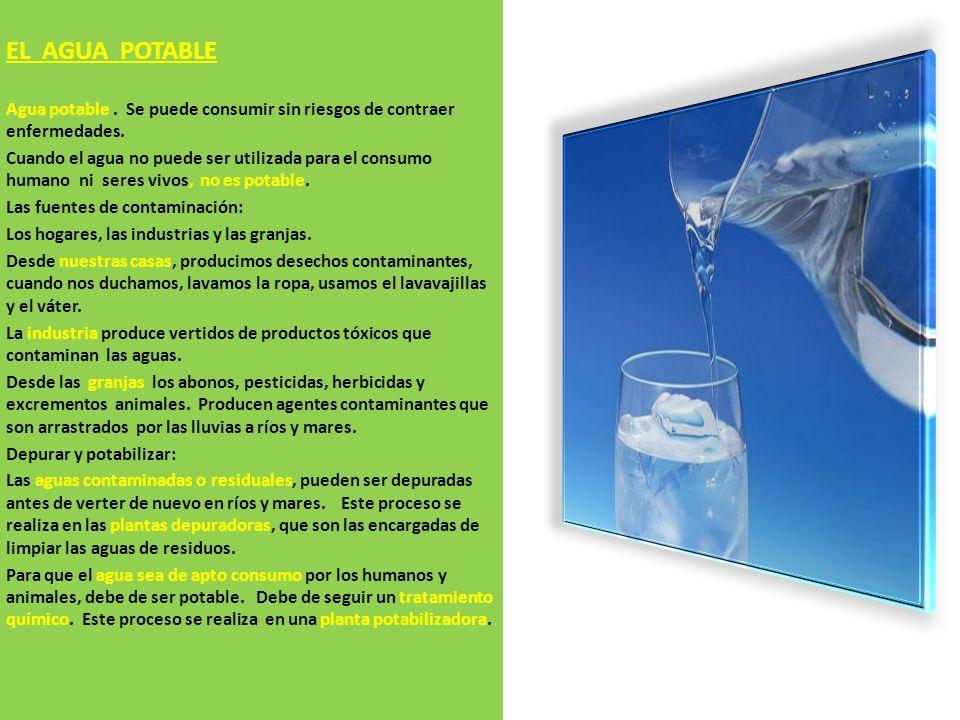 EL AGUA POTABLE Agua potable . Se puede consumir sin riesgos de contraer enfermedades.