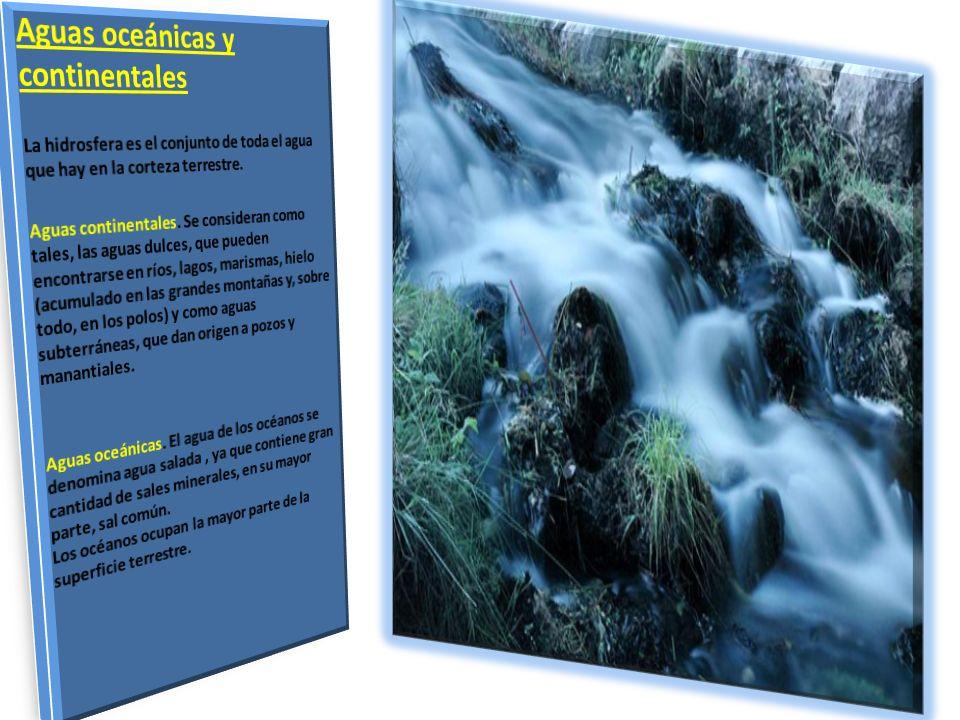 Aguas oceánicas y continentales